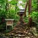 Chūson-ji 中尊寺