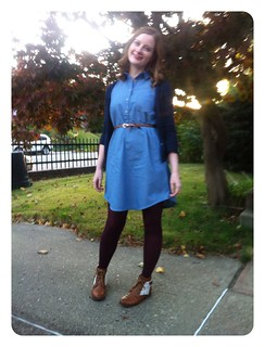 Red Knits Chambray Alder Shirtdress