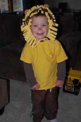 Our little lion