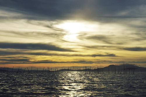 Siargao Island2