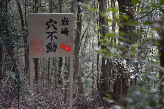 141109_IWASAKI_AS_7