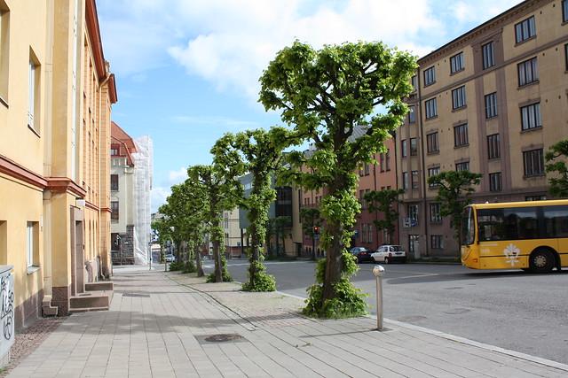 Turku en verano