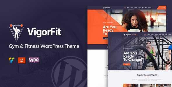 Vigor WordPress Theme free download