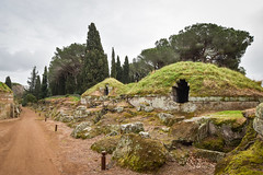 Burial mounds on Via Sepolcrale Principale, Necropolis of the Banditaccia, Cerveteri