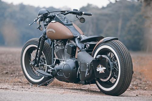 Harley Davidson Brown Sugar
