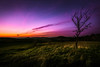 dusk by Goddl