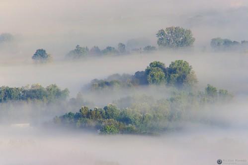 Brouillard dans le Grésivaudan