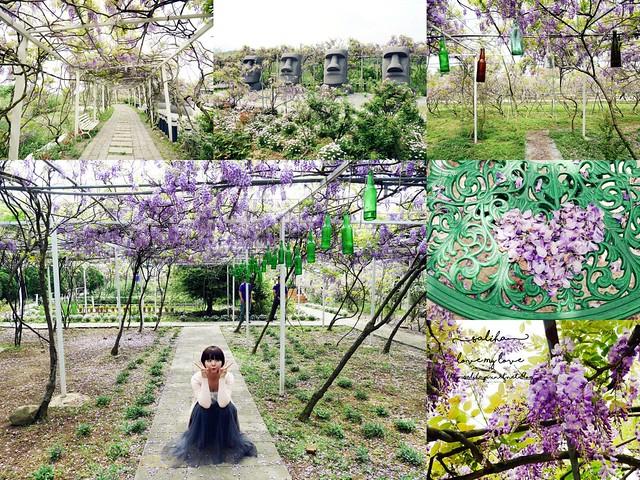 新北淡水三芝紫藤咖啡園夢幻紫色隧道 (49)