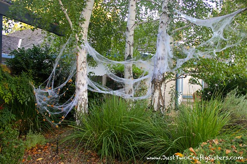 Spooky spider infested halloween tree decor