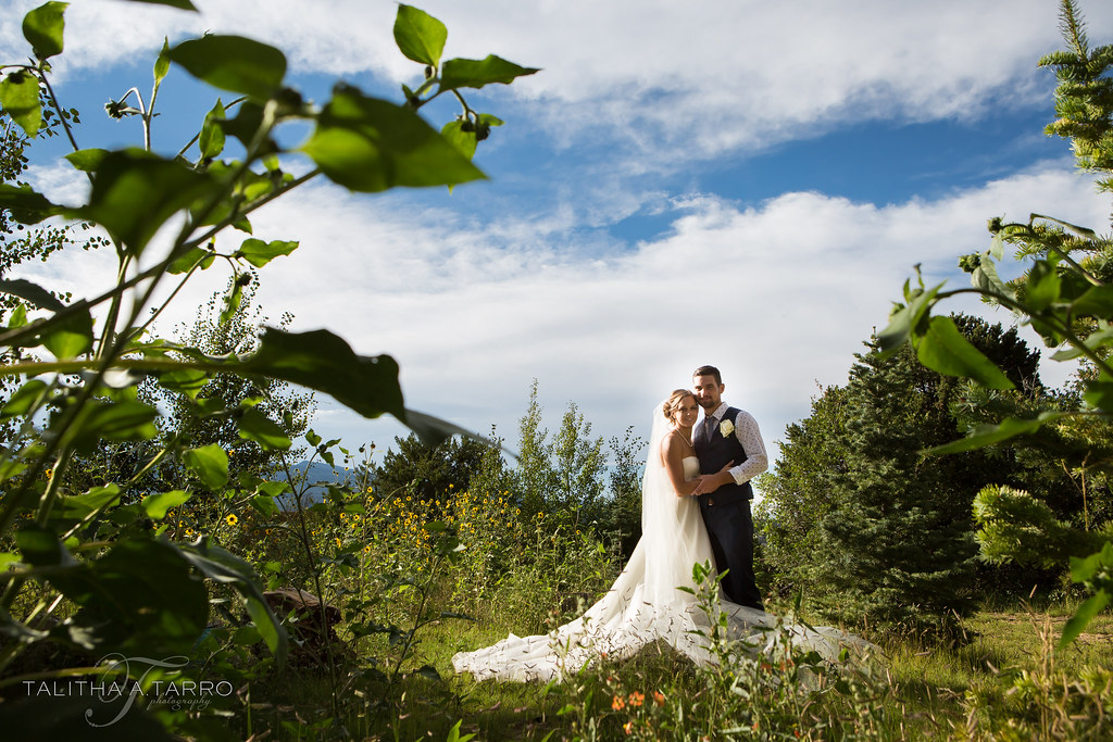 Nature Pointe Wedding