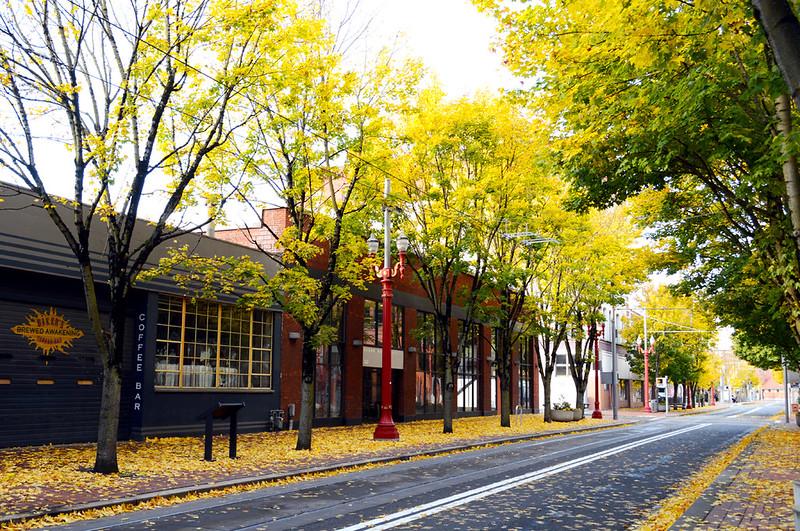 Downtown Autumn