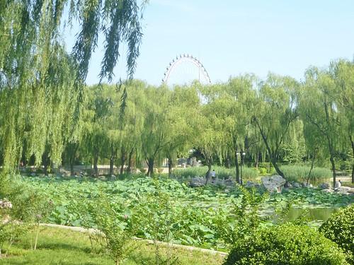 Beijing-Parc Longtan (22)