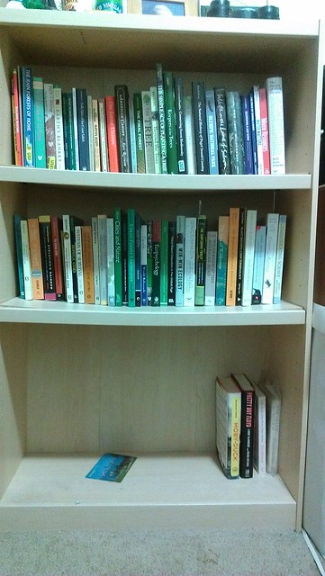To-Be-Read Bookshelf