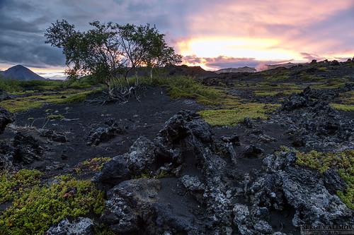 morning sky sunlight mountain black tree field sunshine night sunrise landscape lava iceland moss sand cloudy ísland norðurland