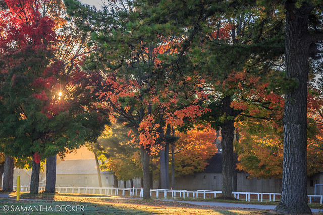 The Beautiful Morning Light at the Oklahoma Track