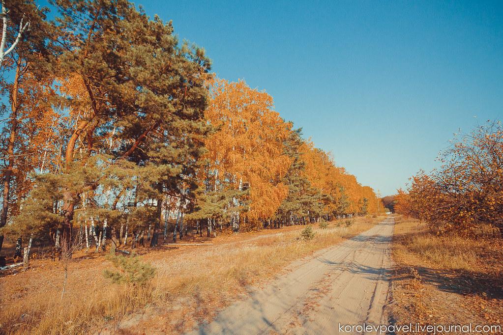 Autumn-027
