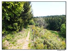 2014-05-30_Chasseradès-Bleymard-0024