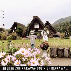 #สวัสดี #หูม่บ้านชิราคาว่า #instaplace #instaplaceapp #place #earth #world  #ทราเวิลโปร #travelprothai #japan #JP #shirakawa,onogun #白川郷shirakawago #street #night