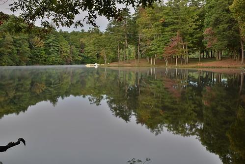 trees lake reflection georgia fortmountainstatepark