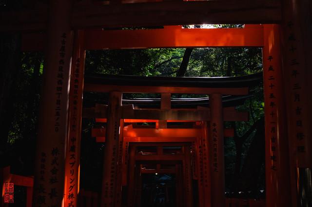 「光と影」 伏見稲荷 - 京都