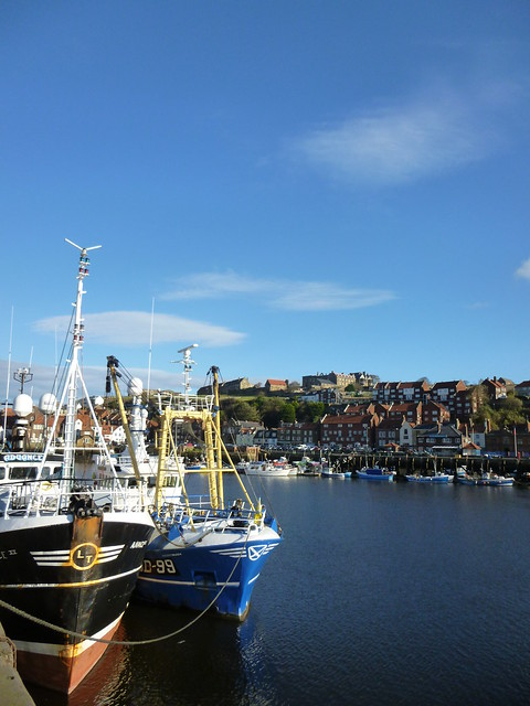 Day 1 - Whitby, moors and Robin Hood's Bay (42)