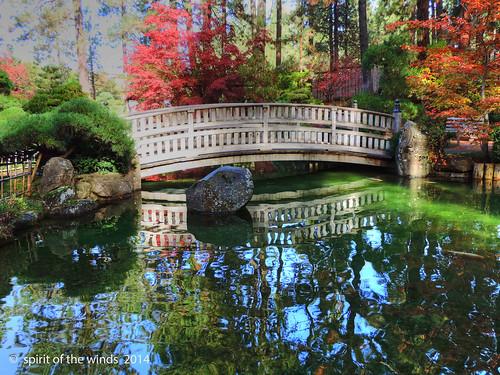 autumn fall japanesegarden wonderworld spokanewashingtonstate