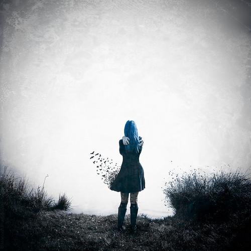 When dreams take flight // 12 10 14