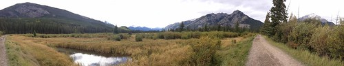 Marsh Loop Trail
