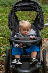 child, baby carriage, spring, toddler, sitting, baby products,