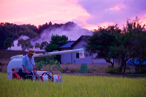 sunset tractor japan landscape rice sony 日本 farmer ricefield kagawa 風景 田んぼ 夕焼け 香川 manno 農家 トラクター apsc a6000 まんのう ©jakejung sel1670z e1670mmf4zaoss α6000 ilce6000
