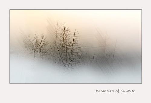 Memories-of-Sunrise,-Off-Highway-35-near-Minden,-Ontario,-September-2014_DSC1476-DXO