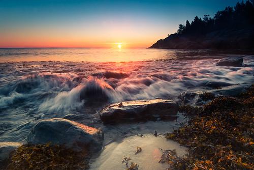 ocean autumn sea seascape sunrise studio landscape dawn seaside nikon wave balticsea shore scandinavia höst havet archipelago hav soluppgång d800 roslagen swedensverige grisslehamn våg väddö tång ålandshav albertengström nikon1635f4 seaofåland östersjön