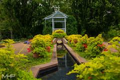 Garden Gazeebo