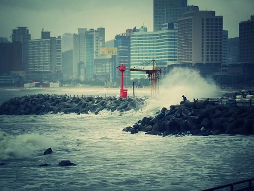 Taifun Vongfong