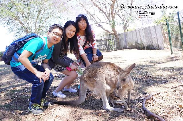 Day 5 - Brisbane 06