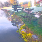 Fall Color_Chicago Botanic Garden_October 2014