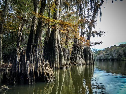 Savannah River from Stokes Bluff with LCU Nov 7, 2014, 4-18 PM Nov 8, 2014, 2-063