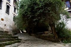 Shigatse, Tashilhunpo Monastery, paths