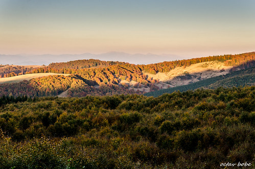 autumn trees sunset mountain landscape dusk romania warmlight maramures dusklight outstandingromanianphotographers