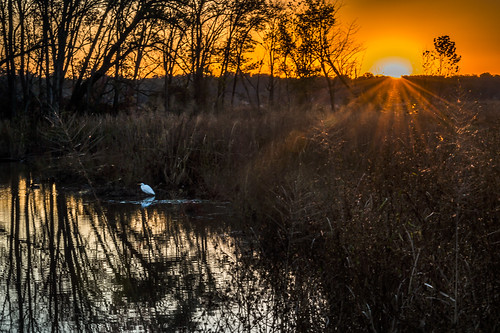 October Sunrise on Dyke's Marsh by Geoff Livingston