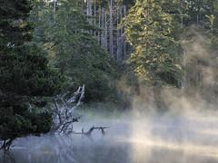 Dawn at Muddy Lake, New River ACEC