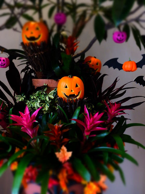 Ikspiari Halloween 2014 11