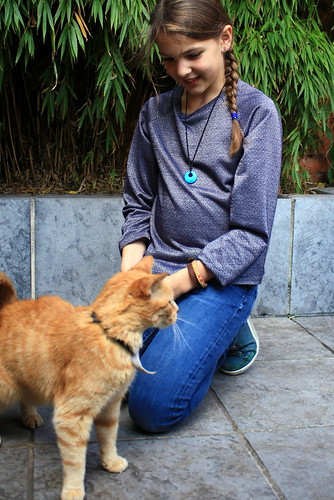 het meisje en de kat