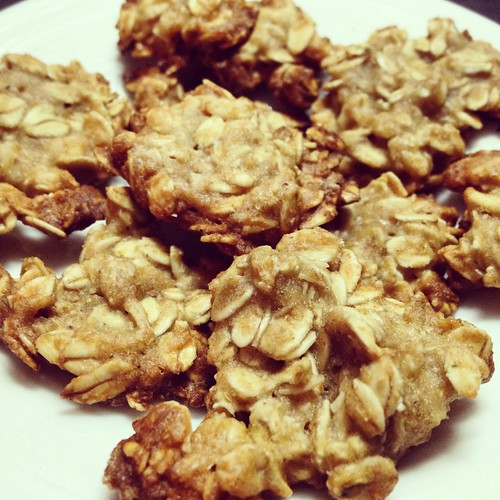 biscotti fiocchi avena tumminia vegan