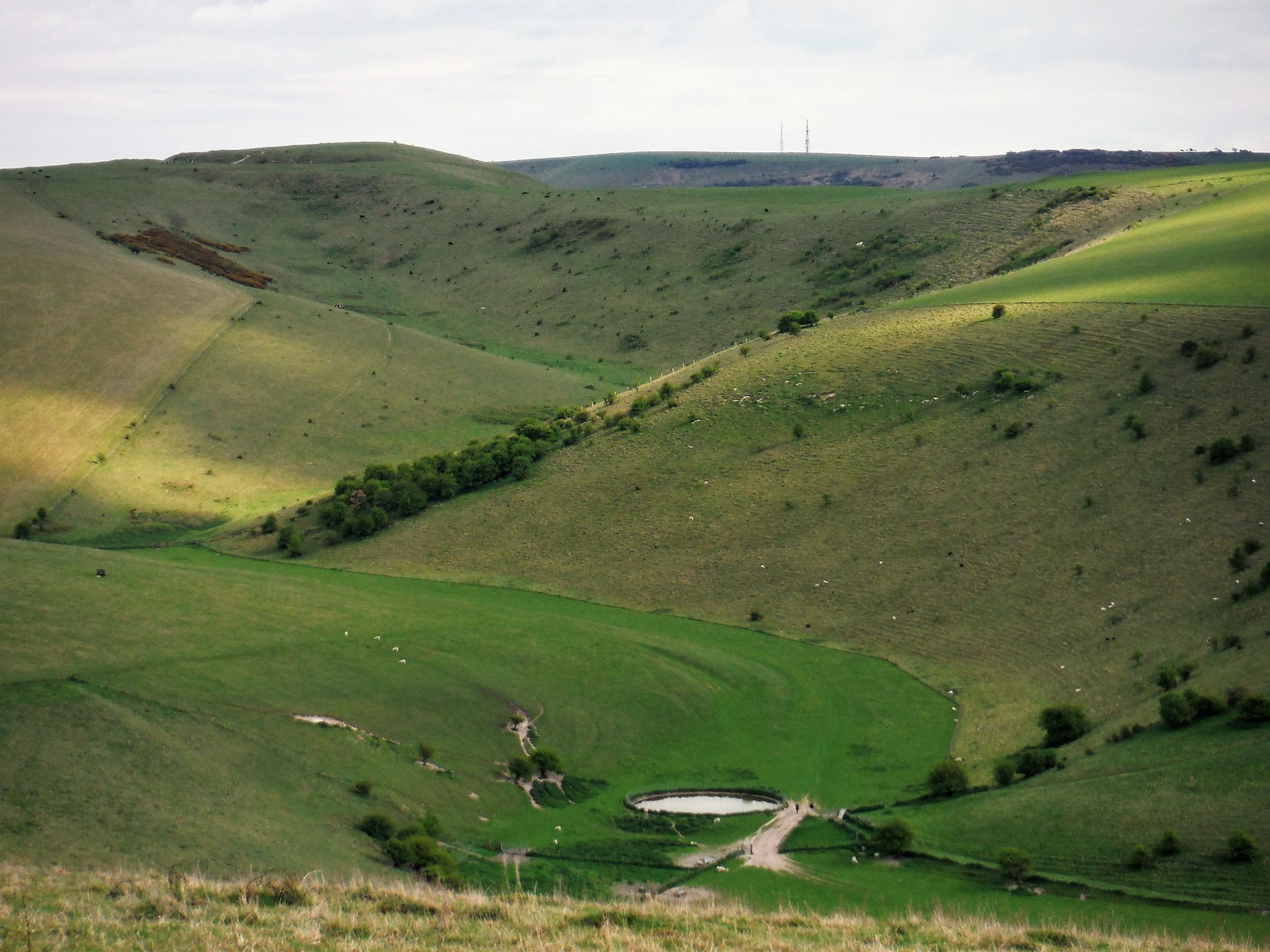 View up Caburn Bottom to Caburn Hillfort (w/o cows) SWC Walk 272 Uckfield to Lewes