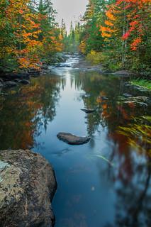 Birch Creek Reflections