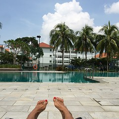 Staycation. That is all. #singapore No bird attacks today. #yay