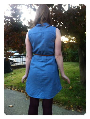 Red Knits Chambray Alder Shirtdress back view