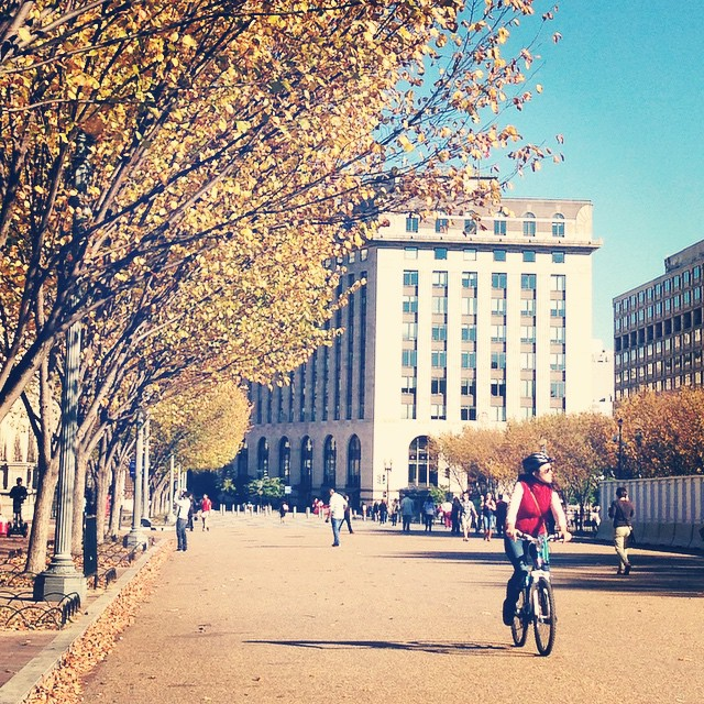This has to be the premier fall weekend of the year #igdc #bikedc
