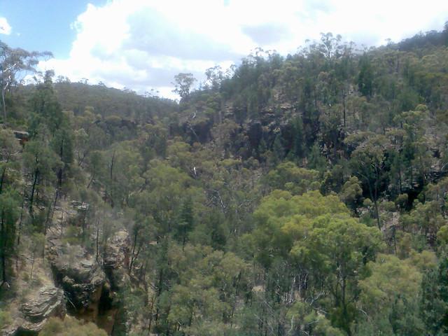 Flinders Ranges Bushland